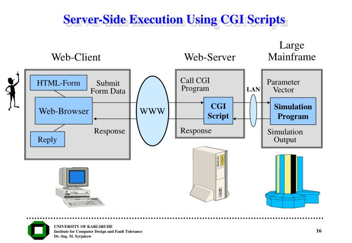 Server-Side Execution Using CGI Scripts