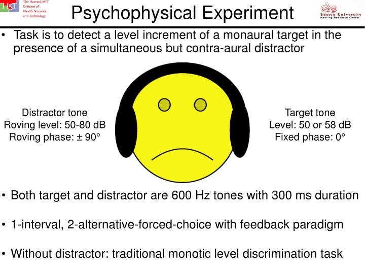 Psychophysical Experiment