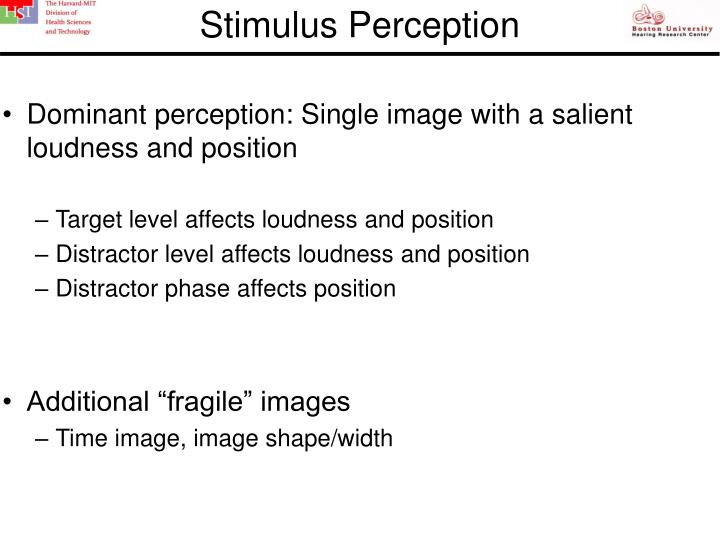Stimulus Perception