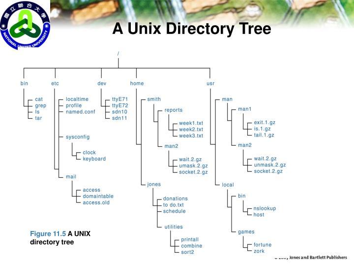 A Unix Directory Tree