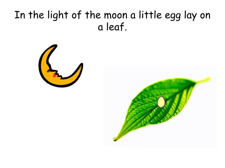 In the light of the moon a little egg lay on a leaf