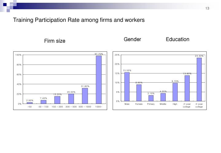Training Participation Rate among firms and workers