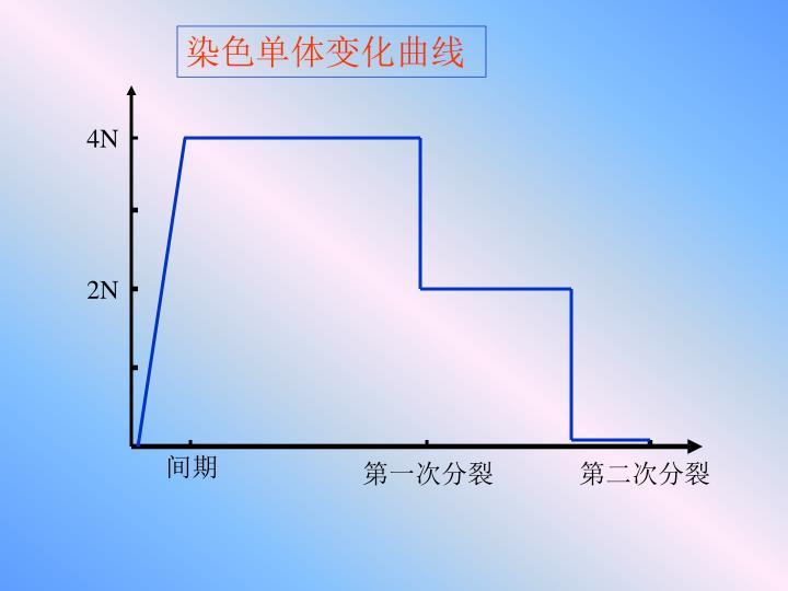 染色单体变化曲线