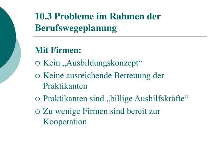 10.3 Probleme im Rahmen der Berufswegeplanung