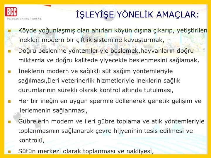 LEYE YNELK AMALAR: