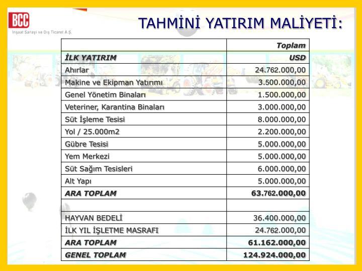 TAHMN YATIRIM MALYET: