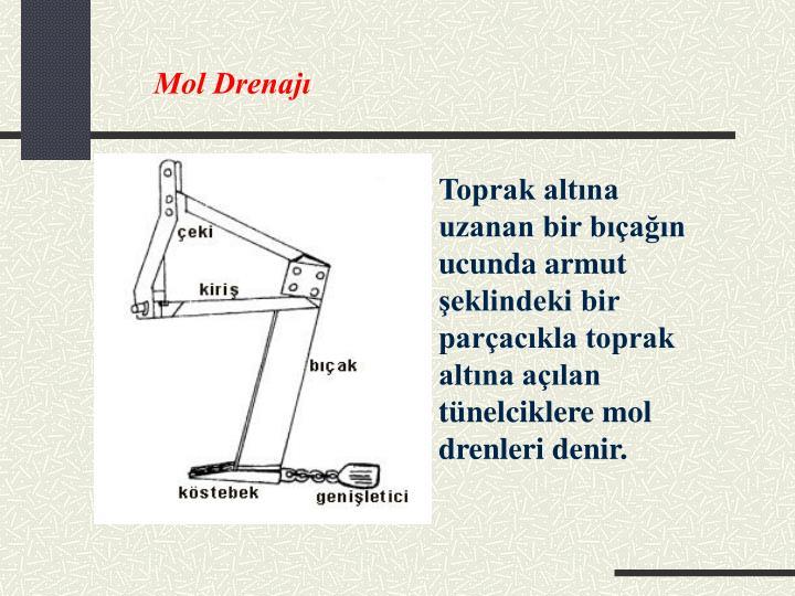 Mol Drenajı