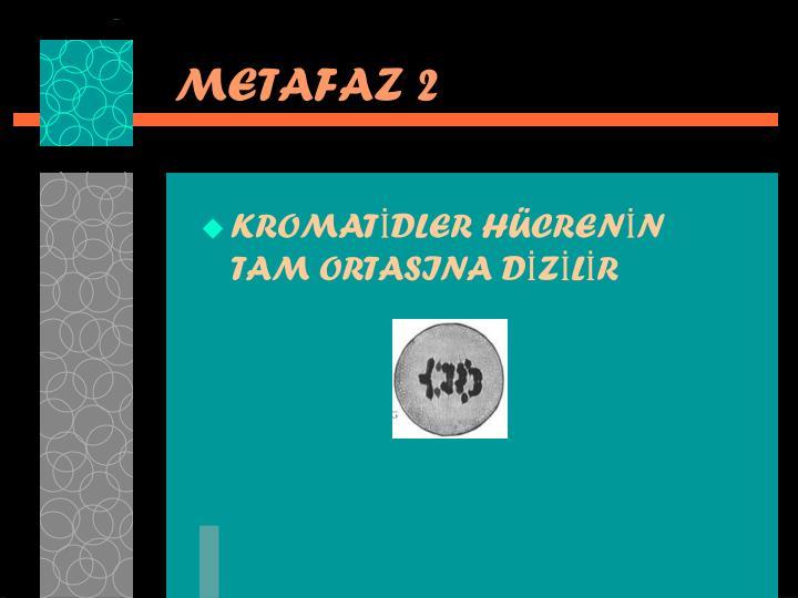 METAFAZ 2