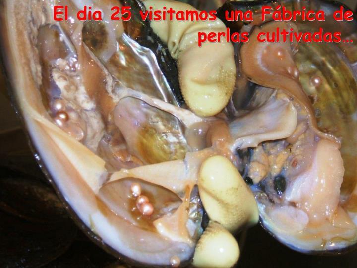 El dia 25 visitamos una Fábrica de perlas cultivadas…