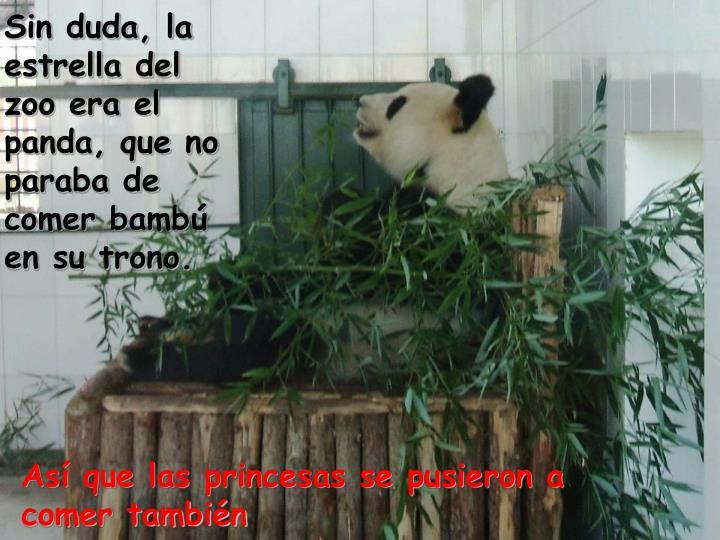 Sin duda, la estrella del zoo era el panda, que no paraba de comer bambú en su trono.