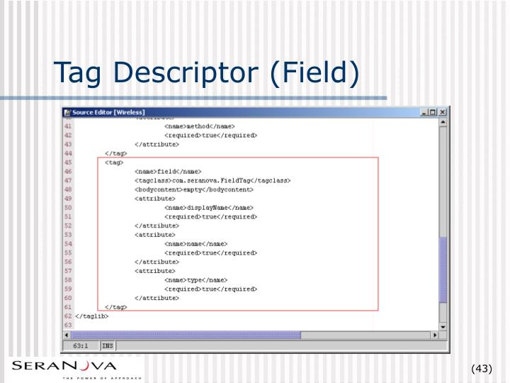 Tag Descriptor (Field)