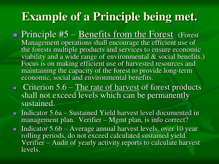 Example of a Principle being met.