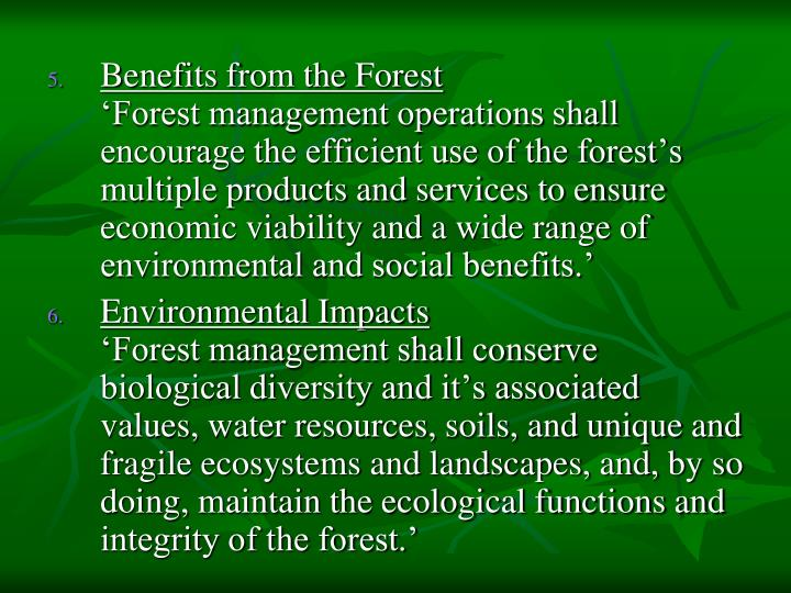 Benefits from the Forest