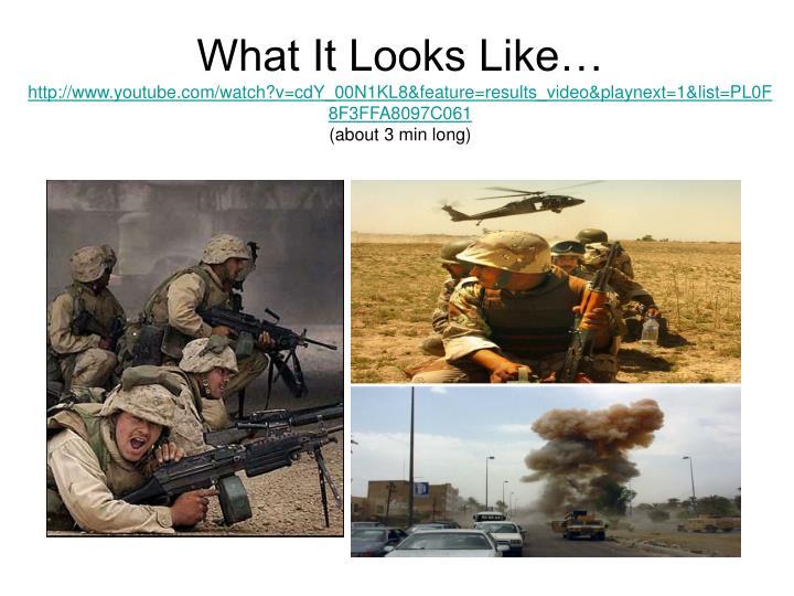What It Looks Like…