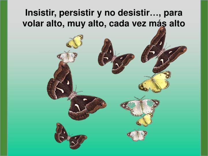 Insistir, persistir y no desistir…, para volar alto, muy alto, cada vez más alto