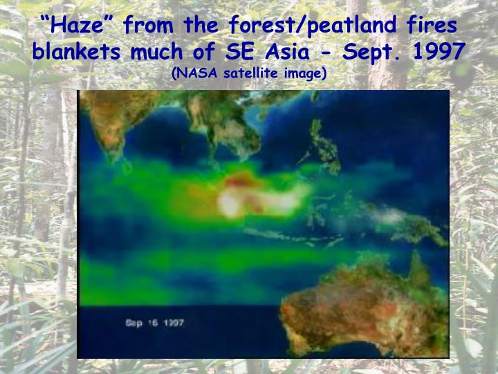 """Haze"" from the forest/peatland fires blankets much of SE Asia - Sept. 1997"
