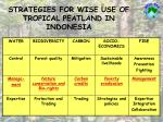 strategies for wise use of tropical peatland in indonesia