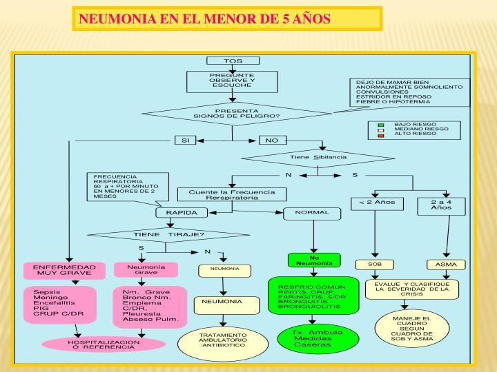 NEUMONIA EN EL MENOR DE 5 AÑOS