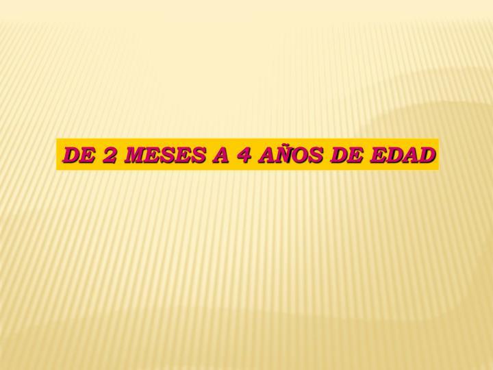 DE 2 MESES A 4 AÑOS DE EDAD