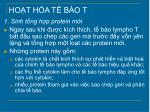 ho t h a t b o t2