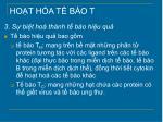 ho t h a t b o t4