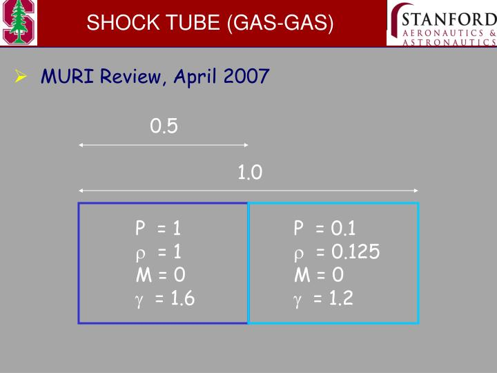 SHOCK TUBE (GAS-GAS)