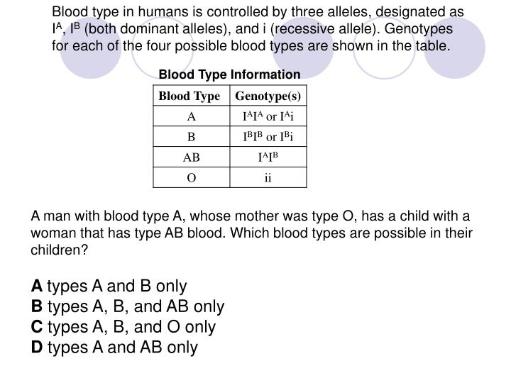 Blood type in humans is controlled by three alleles, designated as I