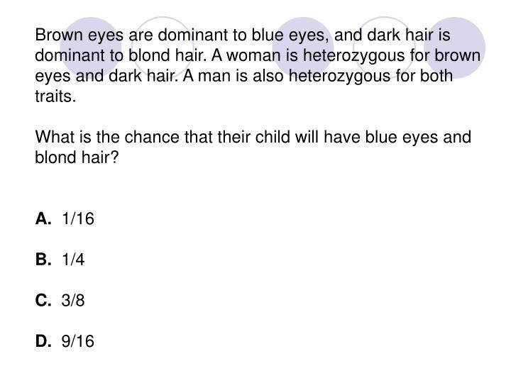Brown eyes are dominant to blue eyes, and dark hair is dominant to blond hair. A woman is heterozygous for brown eyes and dark hair. A man is also heterozygous for both traits.