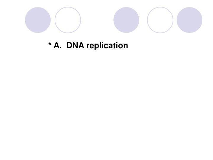 * A.  DNA replication