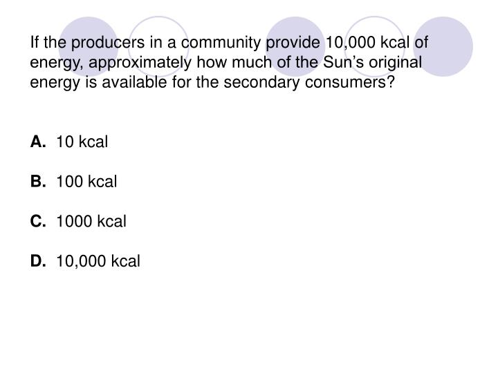If the producers in a community provide 10,000 kcal of energy, approximately how much of the Sun's original energy is available for the secondary consumers?