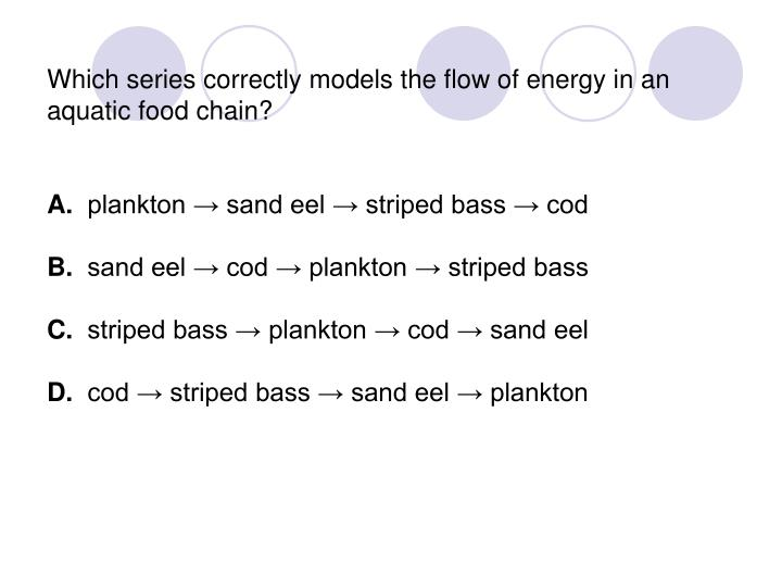 Which series correctly models the flow of energy in an aquatic food chain?