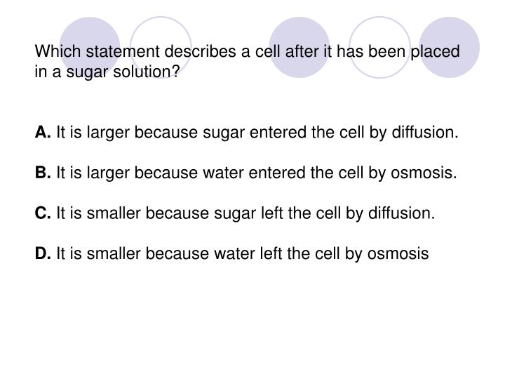 Which statement describes a cell after it has been placed in a sugar solution?