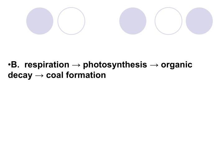 B.  respiration → photosynthesis → organic decay → coal formation