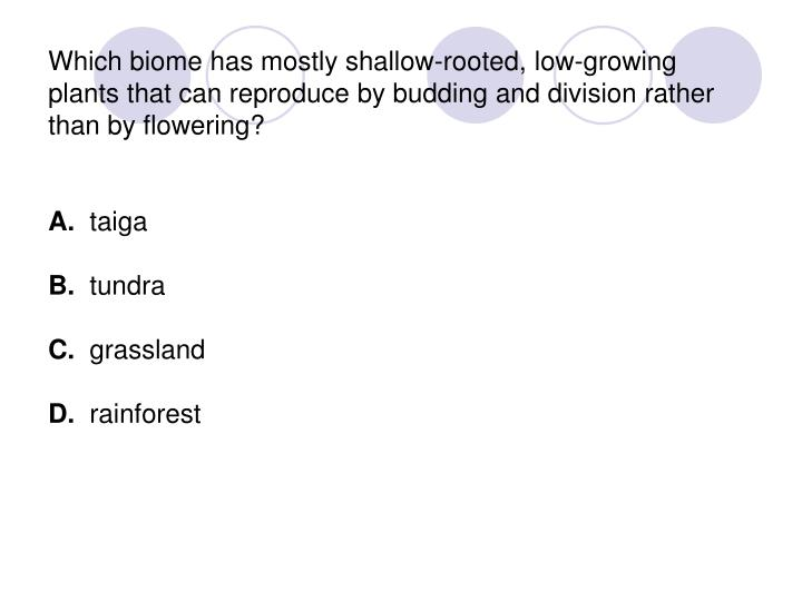 Which biome has mostly shallow-rooted, low-growing plants that can reproduce by budding and division rather than by flowering?