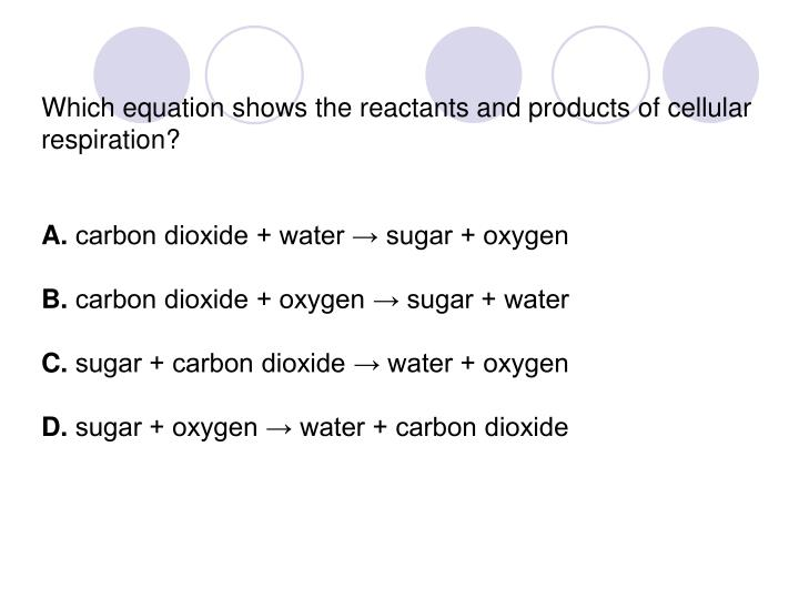 Which equation shows the reactants and products of cellular respiration?