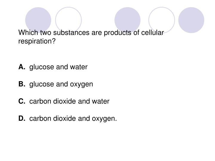 Which two substances are products of cellular respiration?