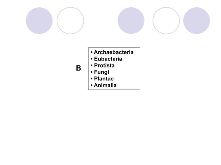 • Archaebacteria