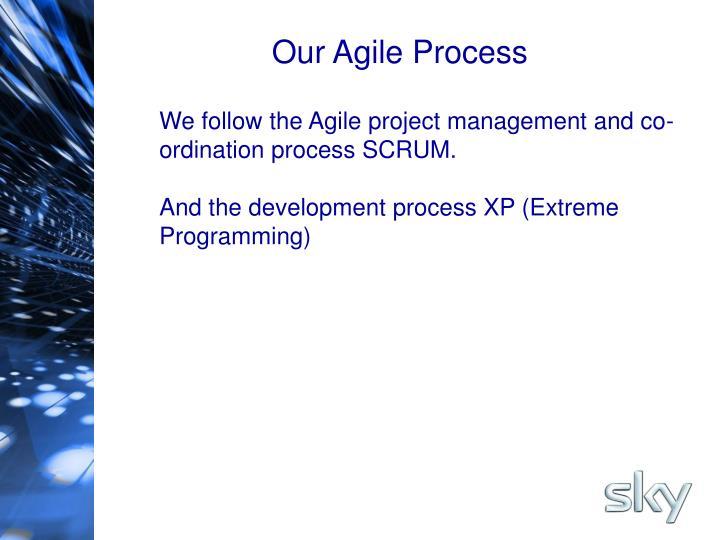 Our Agile Process