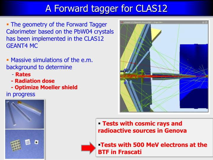 The geometry of the Forward Tagger Calorimeter based on the PbW04 crystals has been implemented in the CLAS12 GEANT4 MC