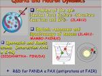 quarks and hadron dynamics