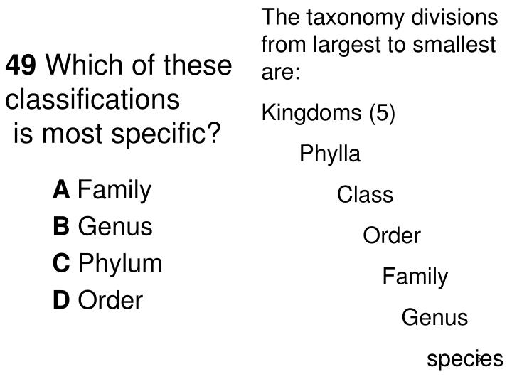The taxonomy divisions from largest to smallest are: