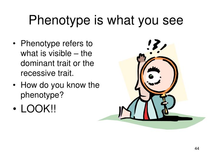 Phenotype is what you see