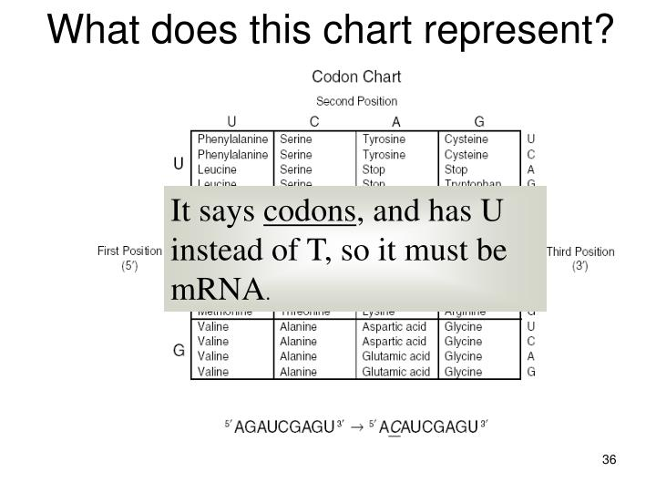 What does this chart represent?