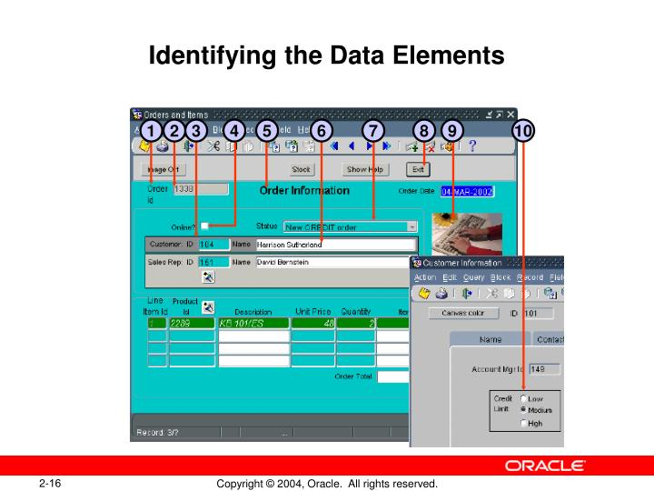 Identifying the Data Elements