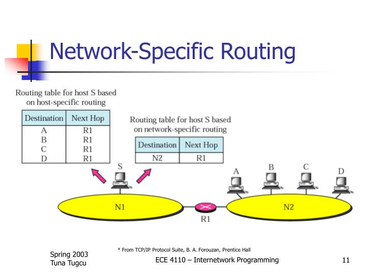 Network-Specific Routing