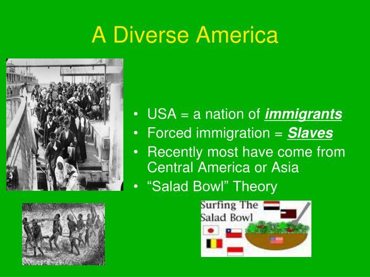 A Diverse America
