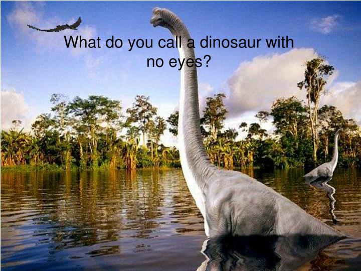 What do you call a dinosaur with no eyes?