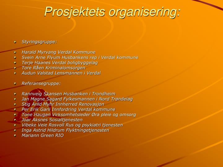 Prosjektets organisering: