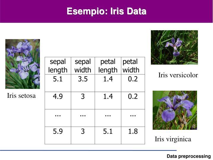 Esempio: Iris Data
