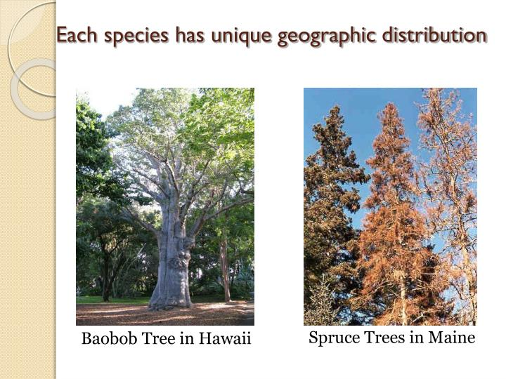 Each species has unique geographic distribution